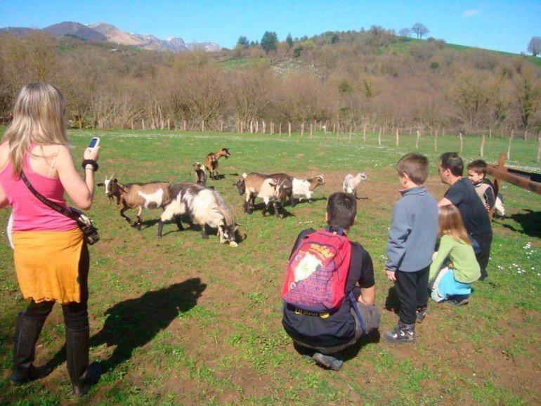 Niños alimentando a las cabras de casa rural Katxenea :: Agroturismos en Navarra