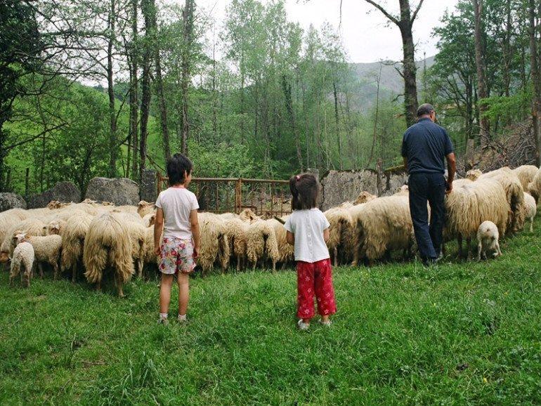 Turismo familar con niños en Navarra :: Abelore, Casas Rurales de Agroturismo de Navarra