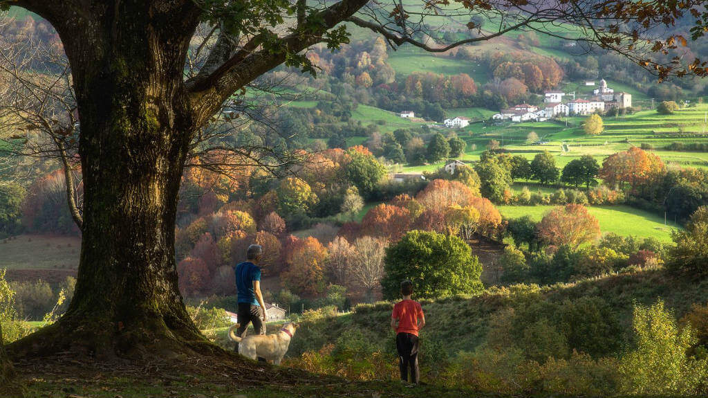 Valle de Baztán, Navarra :: Abelore, Casas Rurales de Agrotursmo en Navarra