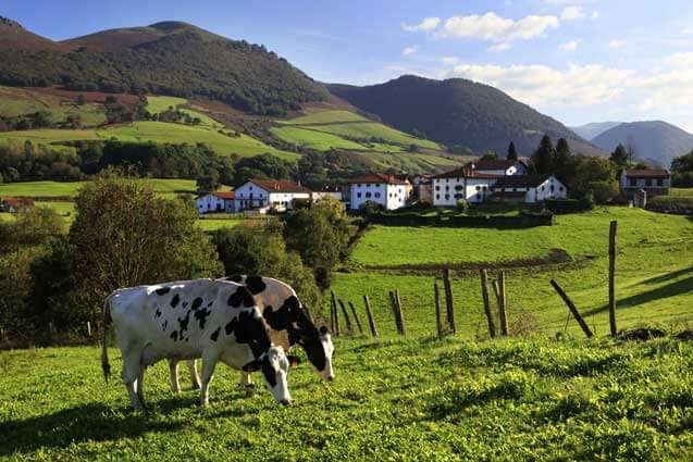 Vistas y entorno de casa rural Jauregia II, Aniz, valle de Baztan :: Agroturismos en Navarra