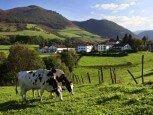 Alrededores y vistas desde casa rural Jauregia, Aniz, valle de Baztan :: Agroturismos en Navarra