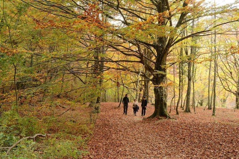 El Nacedero del Urederra en otoño :: Abelore, casas rurales de Agroturismo en Navarra (Foto: María Ostolaza / Flickr)