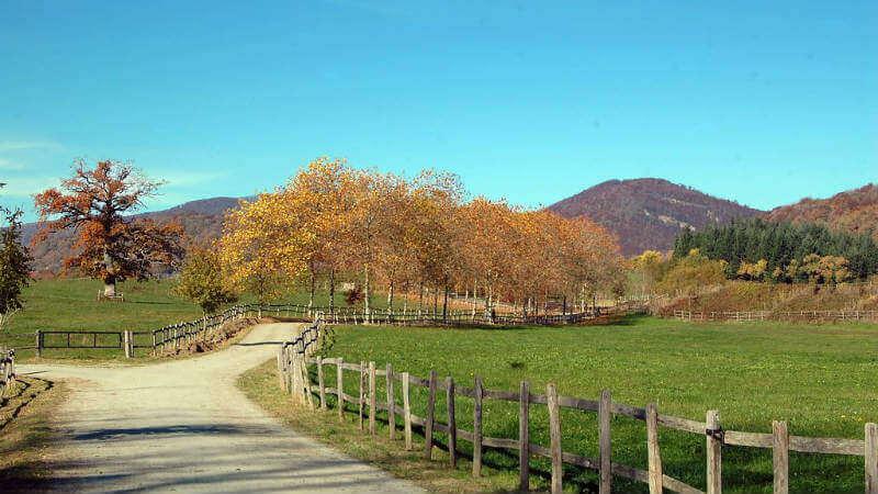 Valle de Ultzama - Turismo rural de agroturismo en Navarra